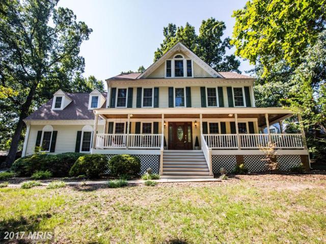 110 Poplar Drive, Fredericksburg, VA 22401 (#FB10049092) :: LoCoMusings
