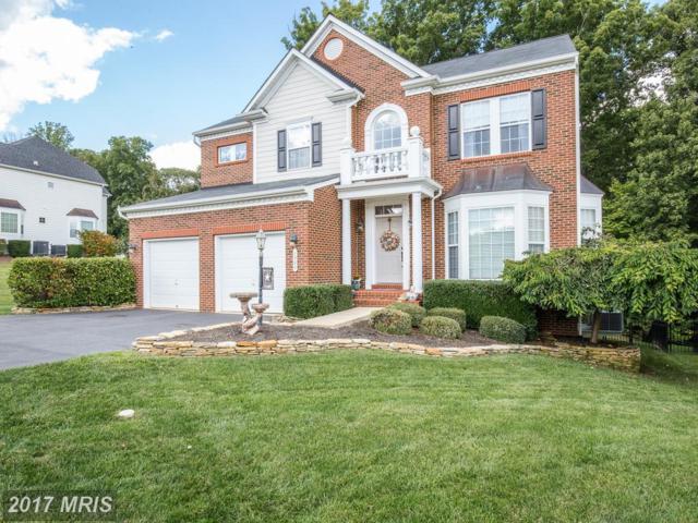 1300 Preserve Lane, Fredericksburg, VA 22401 (#FB10059156) :: Pearson Smith Realty