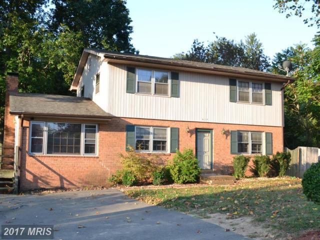 418 Morningside Drive, Fredericksburg, VA 22401 (#FB10069453) :: LoCoMusings