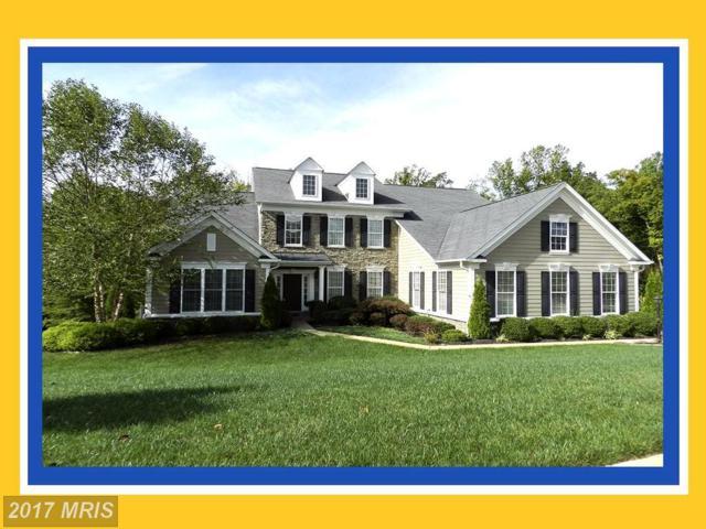 1002 Landrams Retreat, Fredericksburg, VA 22401 (#FB10083957) :: Pearson Smith Realty