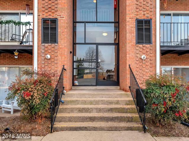 1805-C William Street B10, Fredericksburg, VA 22401 (#FB10128996) :: Pearson Smith Realty