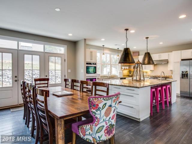 8 Peace Pipe Lane, Fredericksburg, VA 22401 (#FB10178802) :: Keller Williams Pat Hiban Real Estate Group