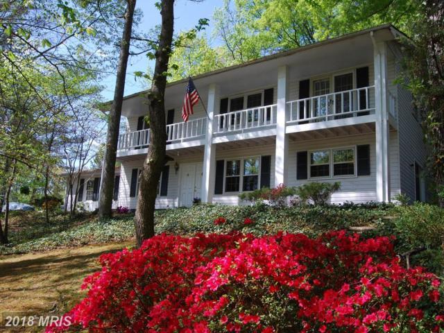 313 Altoona Drive, Fredericksburg, VA 22401 (#FB10199451) :: Keller Williams Pat Hiban Real Estate Group