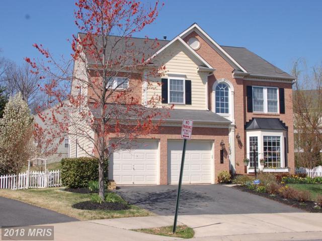 1008 Hotchkiss Court, Fredericksburg, VA 22401 (#FB10202044) :: Green Tree Realty