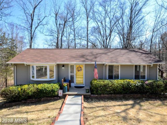 19 Apache Terrace, Fredericksburg, VA 22401 (#FB10207641) :: Keller Williams Pat Hiban Real Estate Group