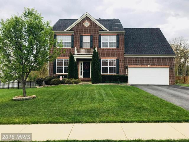 1309 Preserve Lane, Fredericksburg, VA 22401 (#FB10218755) :: Network Realty Group
