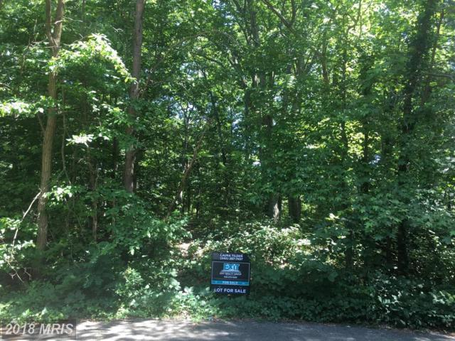 112 Goodloe Drive, Fredericksburg, VA 22401 (#FB10269369) :: The Gus Anthony Team