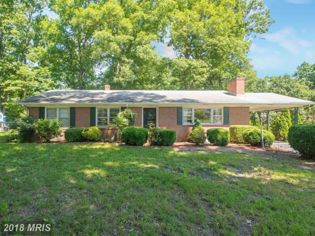 331 Cannon Circle, Fredericksburg, VA 22401 (#FB10273189) :: ExecuHome Realty