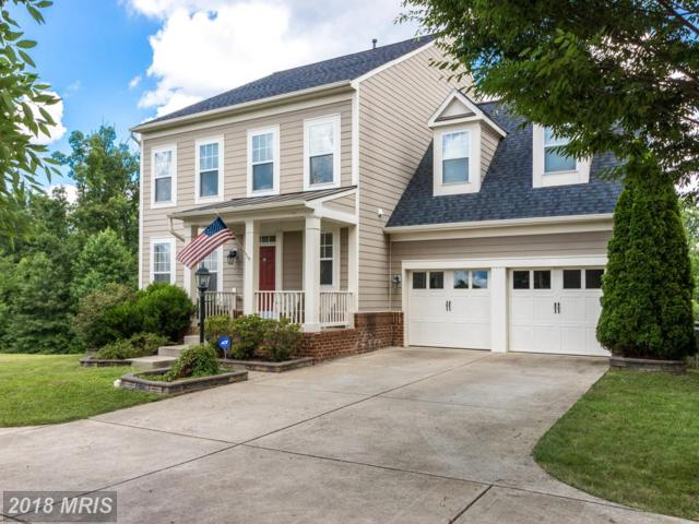 1319 Walker Drive, Fredericksburg, VA 22401 (#FB10293484) :: Bob Lucido Team of Keller Williams Integrity