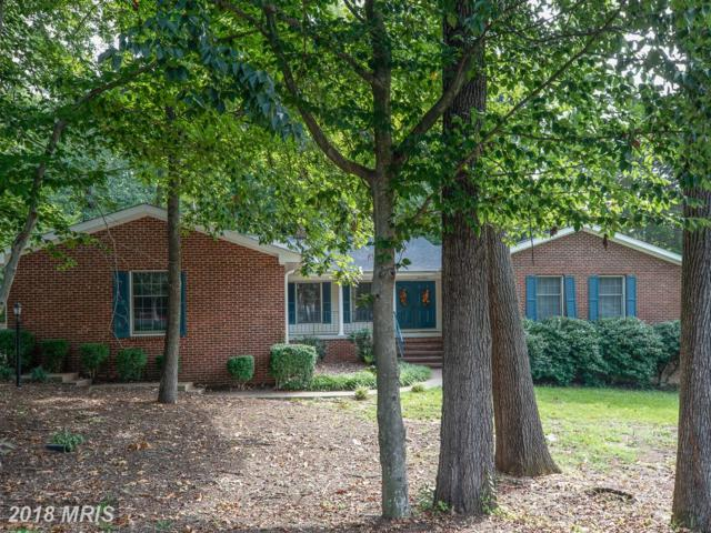 17 Seneca Terrace, Fredericksburg, VA 22401 (#FB10344189) :: Keller Williams Pat Hiban Real Estate Group