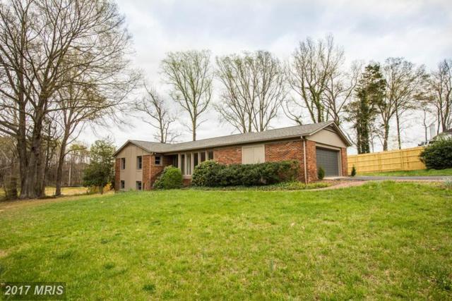 131 Woodland Road, Fredericksburg, VA 22401 (#FB9912345) :: LoCoMusings