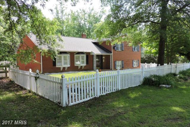 136 Woodland Road, Fredericksburg, VA 22401 (#FB9960624) :: LoCoMusings