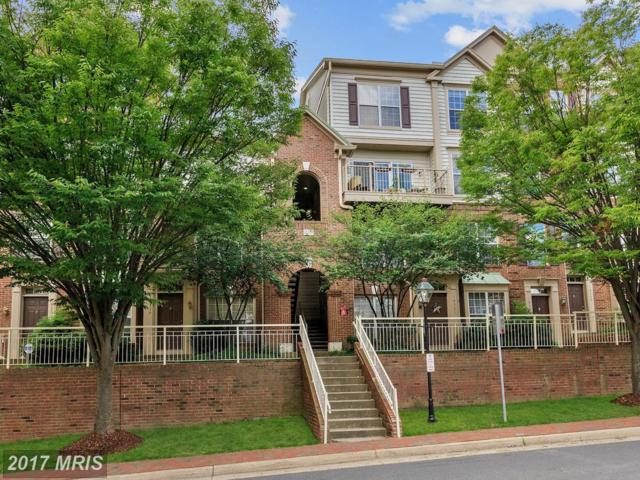 10359 Sager Avenue #303, Fairfax, VA 22030 (#FC10029541) :: Pearson Smith Realty