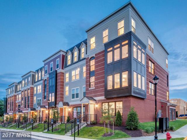 10719 Viognier Terrace, Fairfax, VA 22031 (#FC10082918) :: Circadian Realty Group