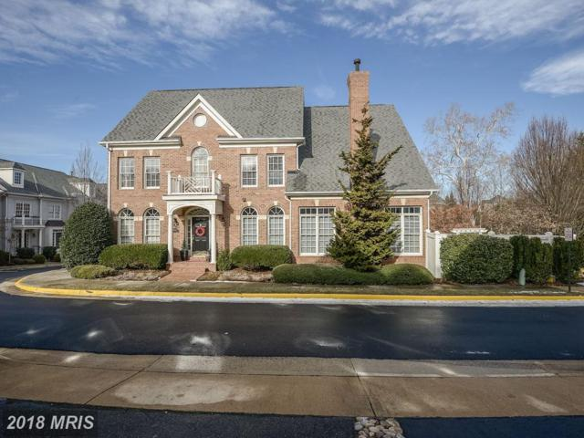 10122 Ballynahown Circle, Fairfax, VA 22030 (#FC10135070) :: The Vashist Group