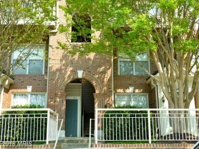 4105 Lexington Court #101, Fairfax, VA 22030 (#FC10238644) :: Dart Homes
