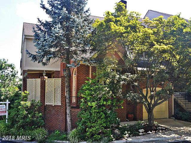 10215 Aspen Willow Drive, Fairfax, VA 22032 (#FC10317234) :: Arlington Realty, Inc.