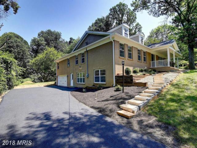 3409 Burrows Avenue, Fairfax, VA 22030 (#FC10353161) :: Green Tree Realty