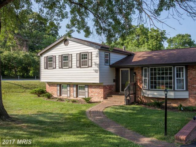 3500 Queen Anne Drive, Fairfax, VA 22030 (#FC9985731) :: LoCoMusings