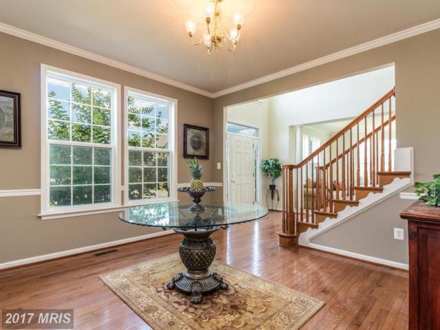 127 Equestrian Drive, Chambersburg, PA 17202 (#FL10009301) :: Pearson Smith Realty
