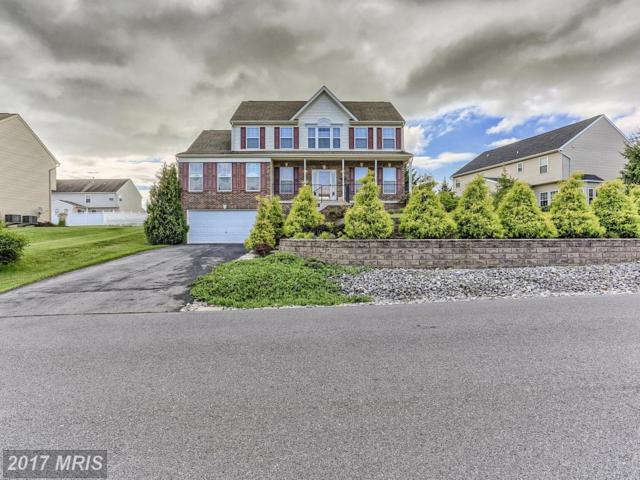 56 Equestrian Drive, Chambersburg, PA 17202 (#FL10014320) :: Pearson Smith Realty