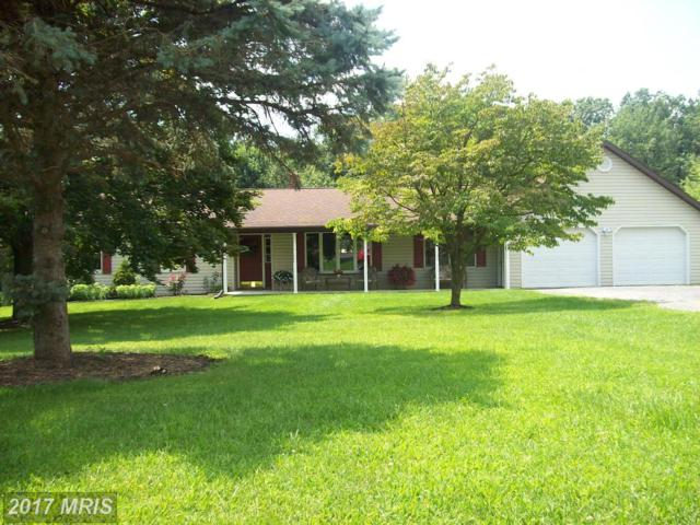 1043 Black Gap Road, Fayetteville, PA 17222 (#FL10023507) :: Pearson Smith Realty