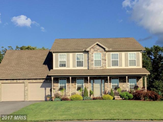 6631 Olde Pine Drive, Chambersburg, PA 17202 (#FL10027201) :: LoCoMusings