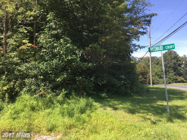 Redbud Court, Waynesboro, PA 17268 (#FL10031131) :: Pearson Smith Realty