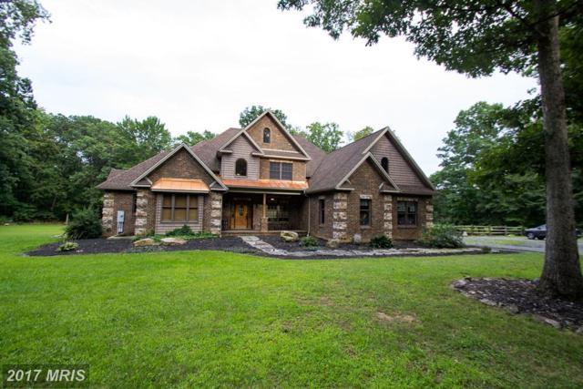 9614 Circle Drive, Chambersburg, PA 17202 (#FL10032423) :: Pearson Smith Realty