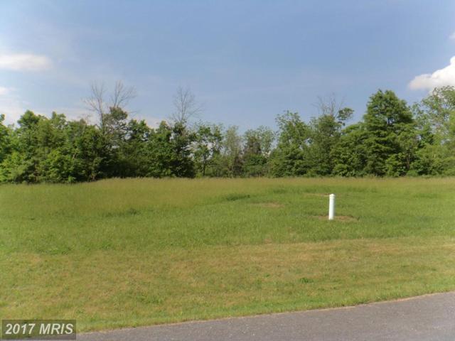 LOT 39 Helens Drive, Greencastle, PA 17225 (#FL10046121) :: LoCoMusings