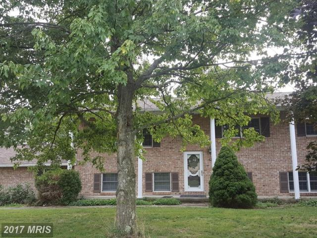 63 Opal Drive, Chambersburg, PA 17202 (#FL10054885) :: Pearson Smith Realty