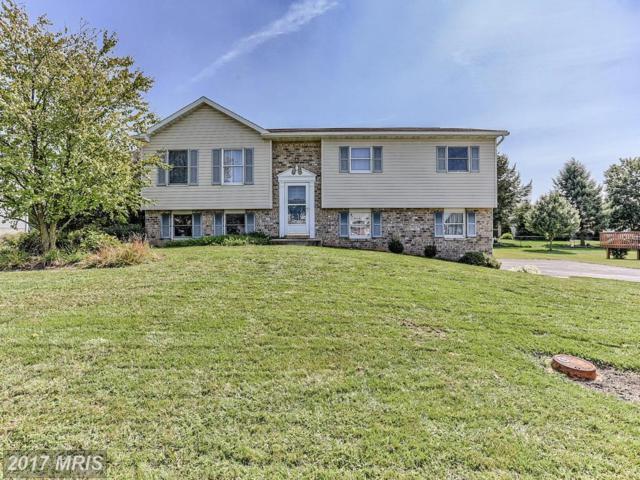 325 Holswart Drive, Shippensburg, PA 17257 (#FL10055305) :: Pearson Smith Realty