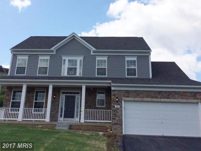 1245 Thistledown Drive, Chambersburg, PA 17202 (#FL10056647) :: Pearson Smith Realty