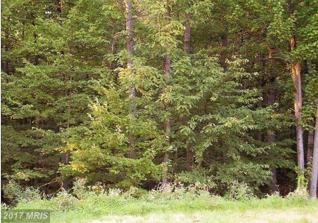 11460 Weatherstone Drive, Waynesboro, PA 17268 (#FL10058256) :: Pearson Smith Realty