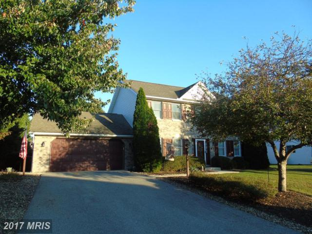 260 Arbutus Drive, Chambersburg, PA 17202 (#FL10072681) :: LoCoMusings
