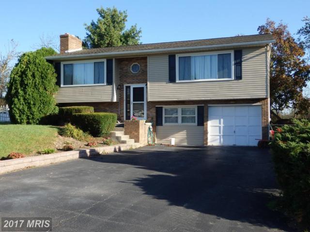 90 Jameslee Drive, Chambersburg, PA 17202 (#FL10085677) :: LoCoMusings