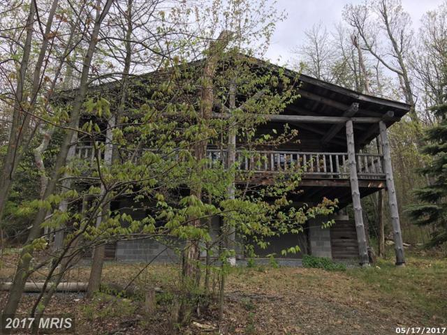 15743 Hickory Drive, Fort Loudon, PA 17224 (#FL10096325) :: Pearson Smith Realty