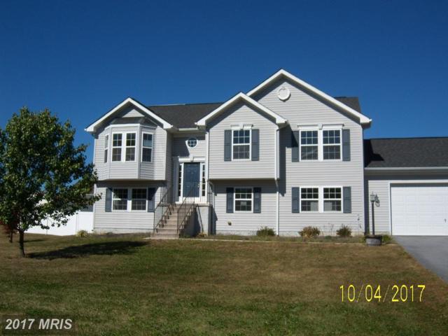 12397 Pittman Road, Mercersburg, PA 17236 (#FL10096951) :: Pearson Smith Realty