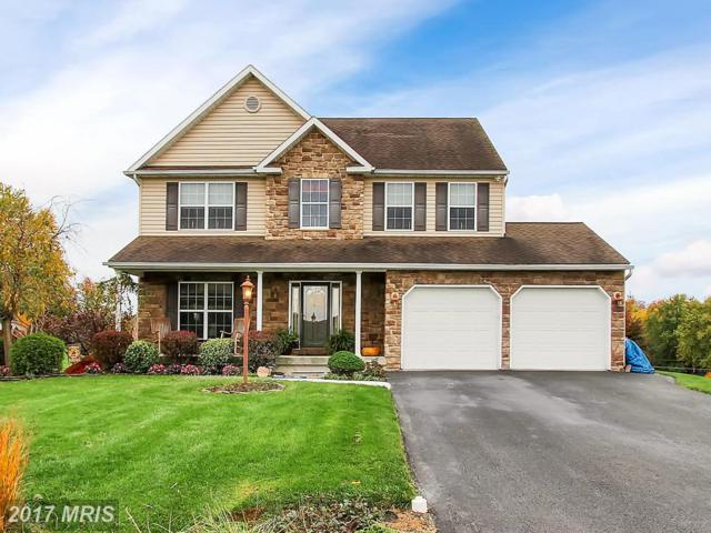 8380 Harper Drive, Waynesboro, PA 17268 (#FL10099972) :: Pearson Smith Realty