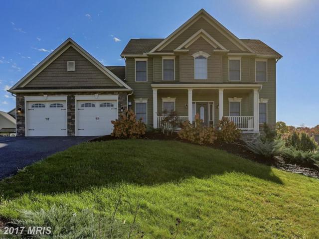 130 Granny Smith Lane, Fayetteville, PA 17222 (#FL10104909) :: Pearson Smith Realty