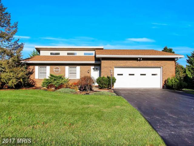 11505 Woodmark Lane, Waynesboro, PA 17268 (#FL10105506) :: Pearson Smith Realty