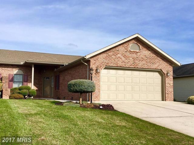 73 Homestead Drive, Greencastle, PA 17225 (#FL10106903) :: Bic DeCaro & Associates