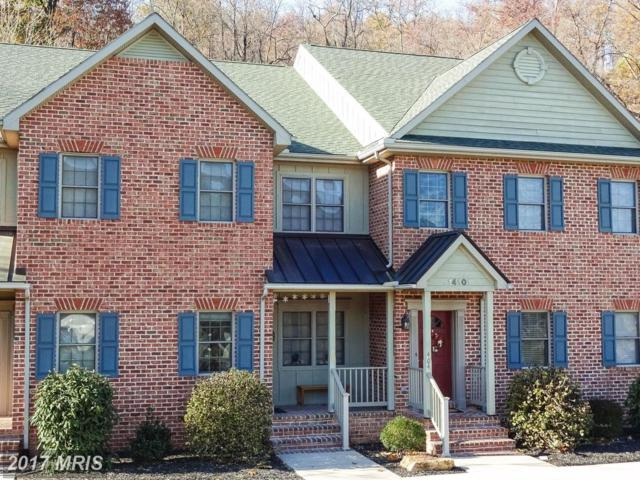 14101 Barberry Court #401, Mercersburg, PA 17236 (#FL10107993) :: Wes Peters Group