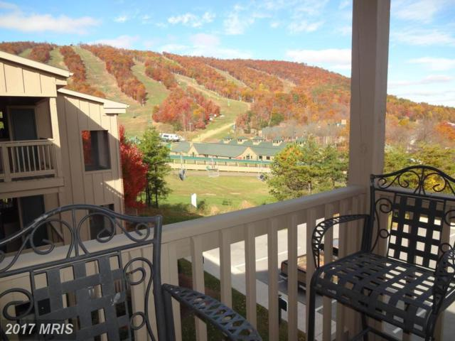 14175 Northernlight Drive #13, Mercersburg, PA 17236 (#FL10109387) :: Pearson Smith Realty