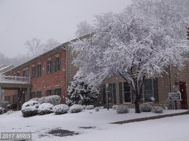 14201 Barberry Circle #107, Mercersburg, PA 17236 (#FL10111616) :: Pearson Smith Realty