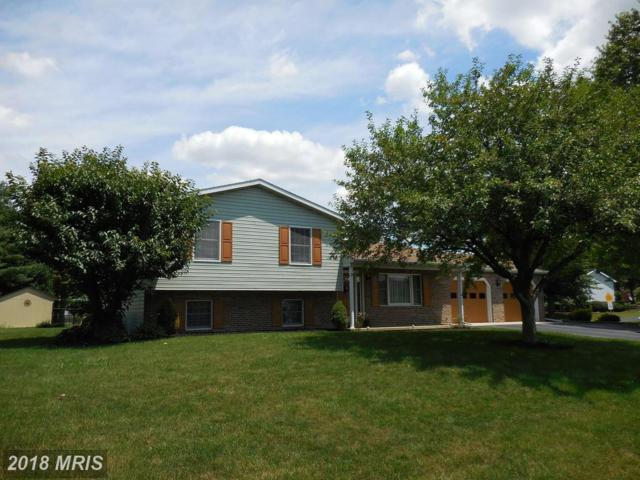 875 Prospect Avenue, Shippensburg, PA 17257 (#FL10128136) :: The Gus Anthony Team
