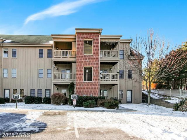 14175 Northernlight Drive #11, Mercersburg, PA 17236 (#FL10131902) :: Pearson Smith Realty