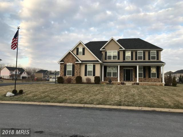 425 Raleigh Avenue, Chambersburg, PA 17202 (#FL10133907) :: Pearson Smith Realty