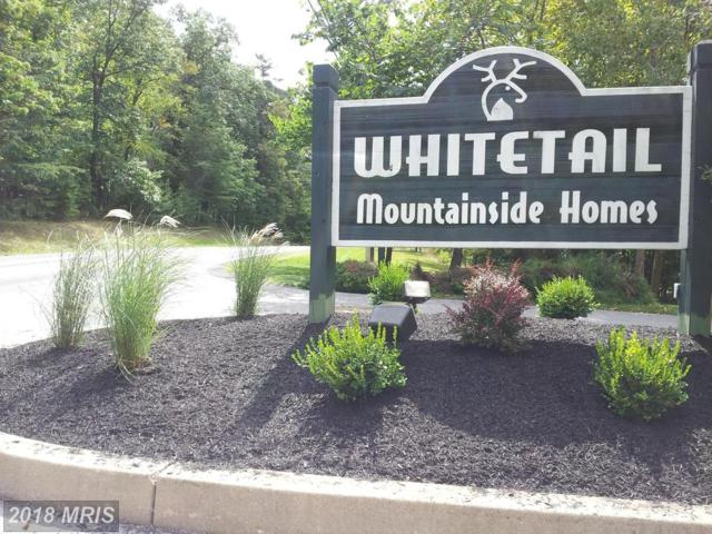 12125 Mountain Side Drive, Mercersburg, PA 17236 (#FL10146211) :: Dart Homes