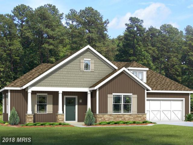 3668 Cascades Drive, Fayetteville, PA 17222 (#FL10154933) :: The Gus Anthony Team